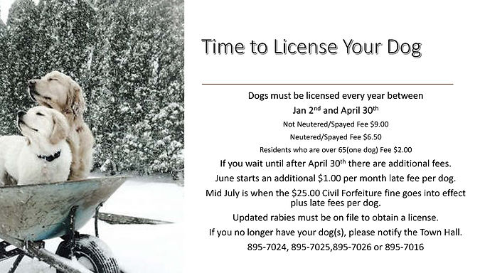 Time to License Your Dog.jpg