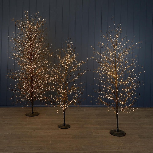 Small Black Forest Light Up Tree