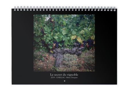2019 Le secret du vignoble