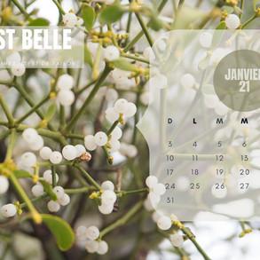 Le calendrier 2021
