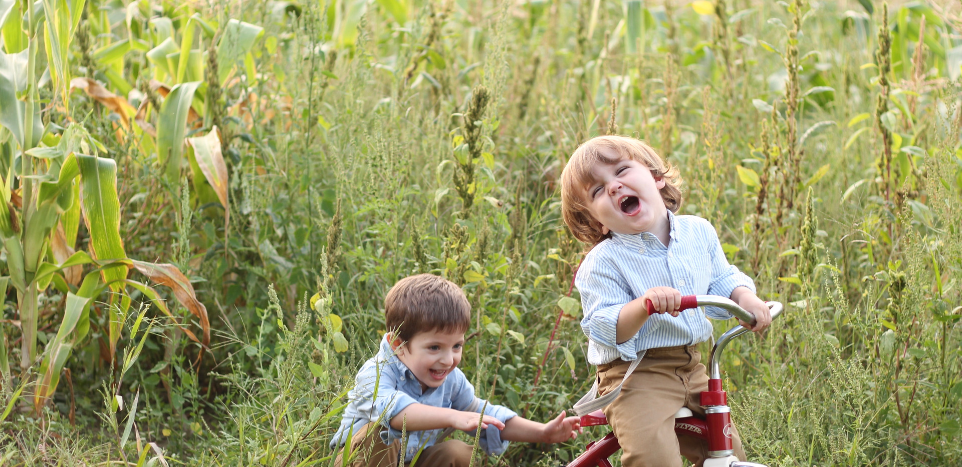 boys laughing in field, Chattanooga photographer