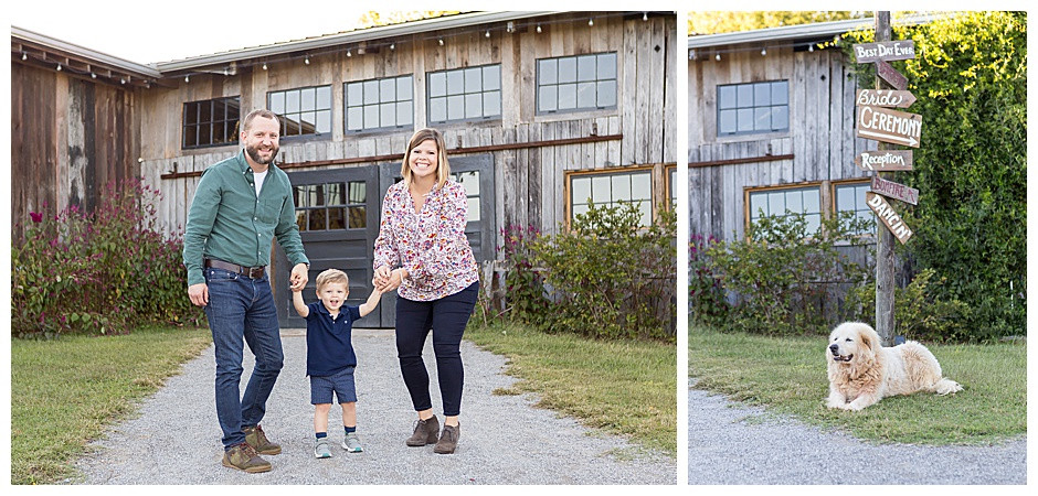family photographer chattanooga, farm dog happy, gravel path, east ivy photography