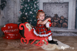 Christmas  Photography cheap price