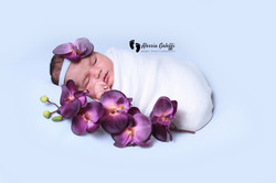 Newborn Photography Aberdeen