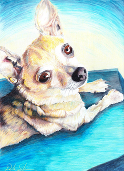whit_dog_com_slonim