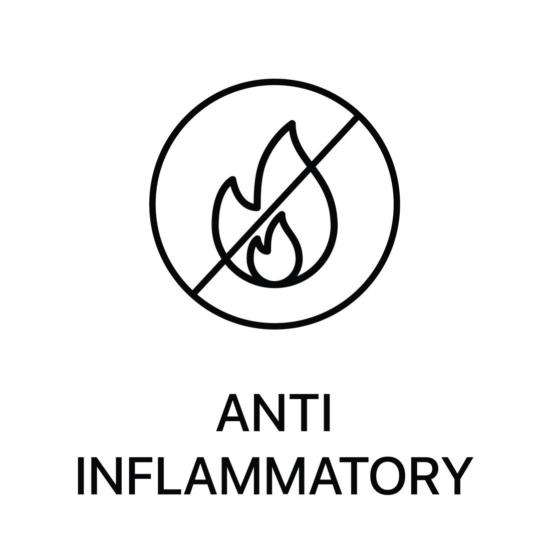 anti inflammatory-01.jpg
