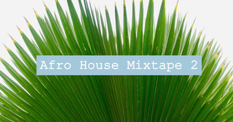 DJ Thompson Afro House Mixtape 2