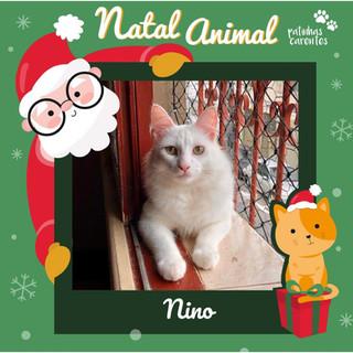Kit Natal - Nino