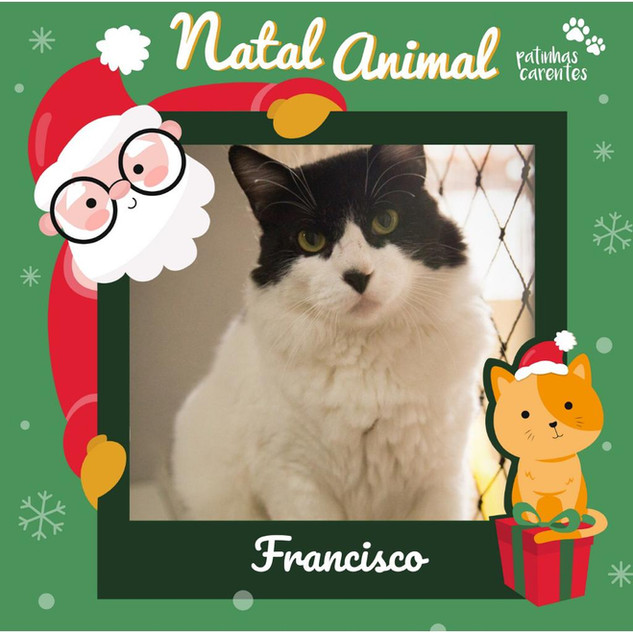 Kit Natal - Francisco