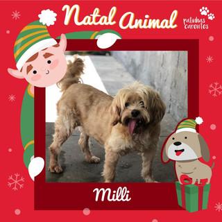 Kit Natal - Milli
