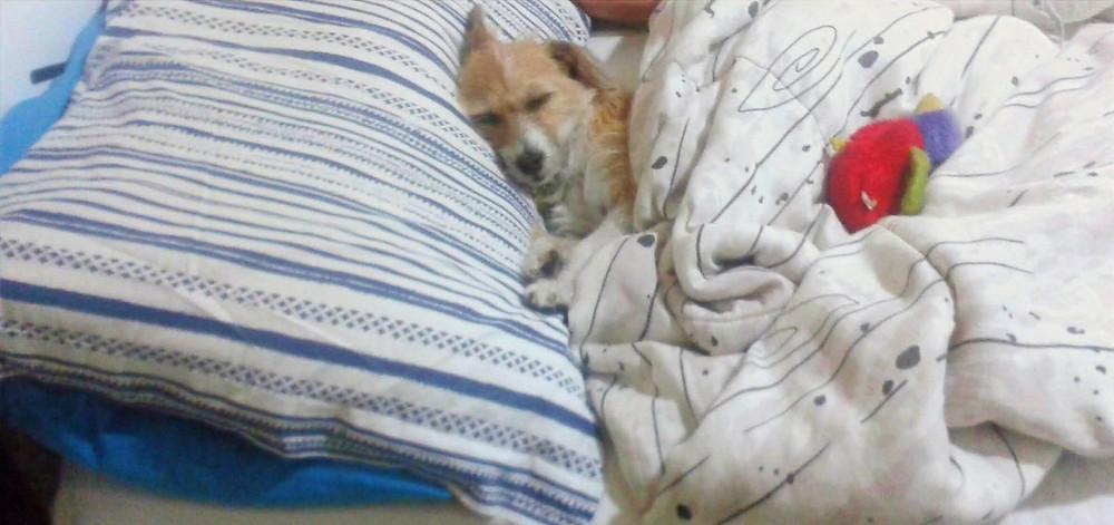 E eu vou dormir aonde?