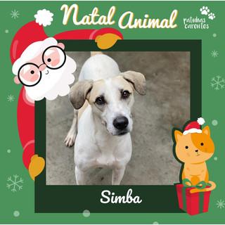 Kit Natal - Simba