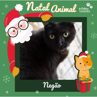 Kit Natal - Negão