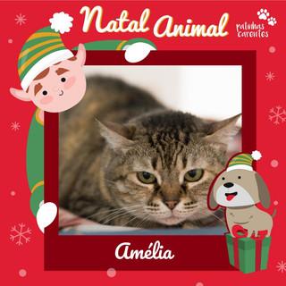 Kit Natal - Amélia