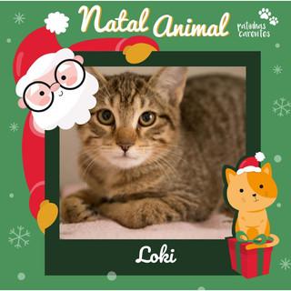 Kit Natal - Loki