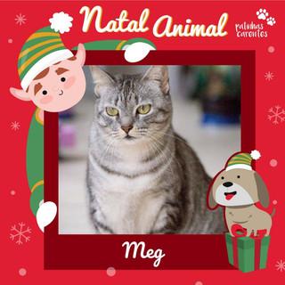 Kit Natal - Meg
