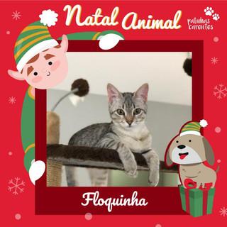 Kit Natal - Floquinha