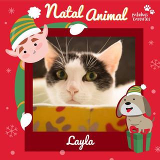 Kit Natal - Layla