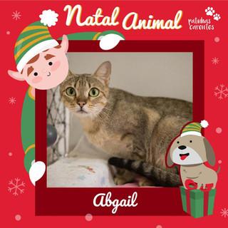 Kit Natal - Abigail