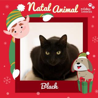 Kit Natal - Black