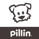 PILLIN_1.jpg