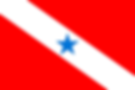 1200px-Bandeira_do_Pará.svg.png