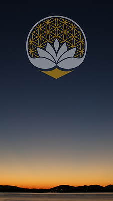 phone background 5.png