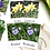 Thumbnail: Spring Flowers Flashcards