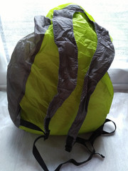 TYR 28L Wet Dry Backpack back.jpg
