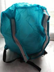 TYR 20L Wet  Dry Backpack back.jpg
