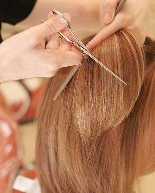 bigstock-hair-cut-1055260.jpg