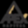 Apex Logo PNG.png