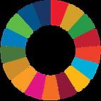 SDG for business parctics Eco-os