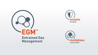 EGM-, Ceramic- und Multiphase-Icons