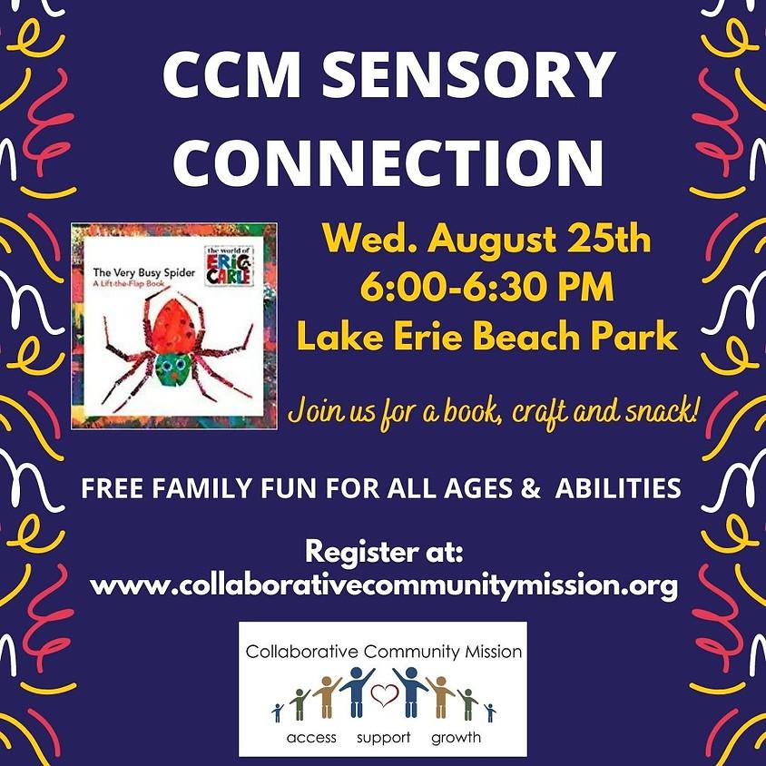 CCM Sensory Connection