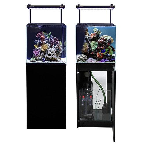 Buy Aqua One Mini Reef Aquarium 90L Online | Fishy Biz | Adelaide | South Australia | Accessories