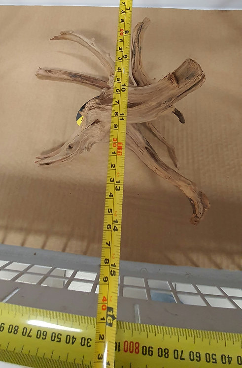 Dymax Tweety Wood Small | Fishy Biz | Aquarium Accessories | Fish Tank | Aquascaping