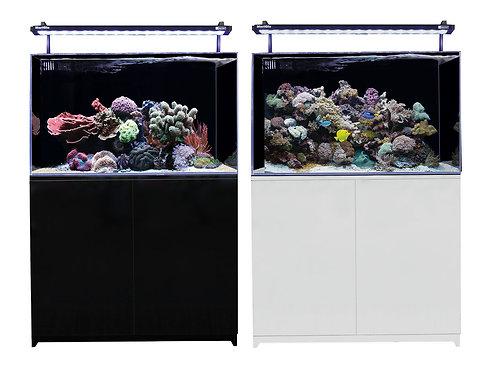 Buy Aqua One Mini Reef Marine Aquarium 160 Liters   Fishy Biz   South Australia   Tropical Marine