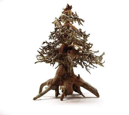 Christmas Tree Bonsai Driftwood 25cm   Fishy Biz