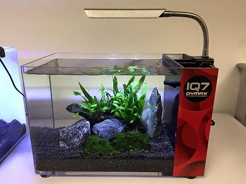 Buy Dymax IQ7 Mini Desktop Aquarium 18L | Fishy Biz | Small Aquarium | Tropical Fish Shop | Buy Aquarium Online