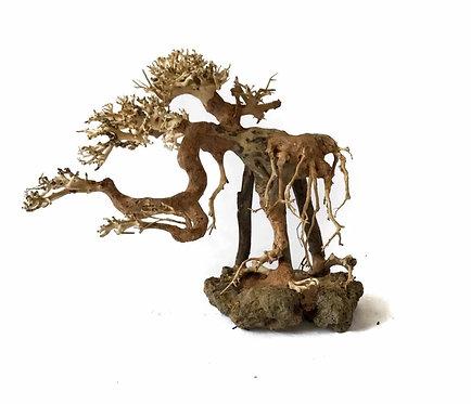 Bonsai Driftwood 25Hx30L