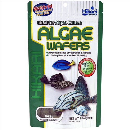 HIKARI ALGAE WAFERS 250G TROPICAL CATFISH PLECOS SINKING WAFER DISC FISH FOOD | Fishy Biz