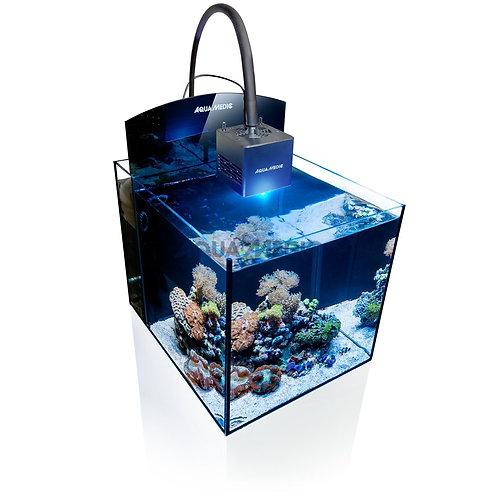 Blenny Qube Fish Tank | Fishy Biz