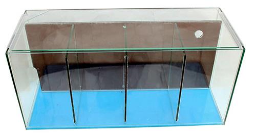 PetWorx Fighter Tank 4 Bay With Filter   Fishy Biz   Betta Fish Accessories   Betta Fish Tank   Adelaide