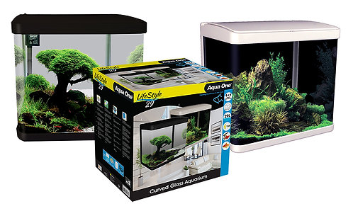 Buy LifeStyle 29 Complete Glass Aquarium Online at Fishy Biz | South Australia | Marine Tropical Freshwater Fish | Fish tanks