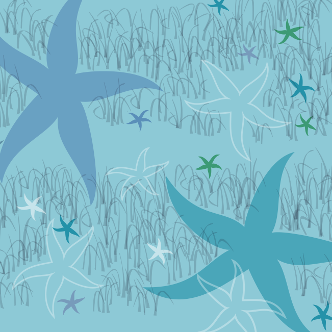 starfish_teal_swatch