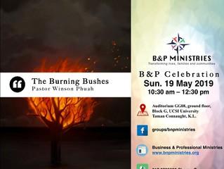 The Burning Bushes