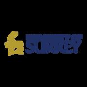 university-of-surrey-logo.png