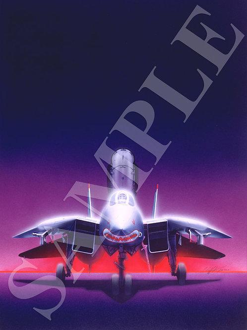 F14 Tomcat Sharktooth (Grey Ghost)