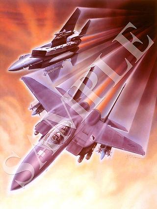 kearns 11 strike Eagle.jpg